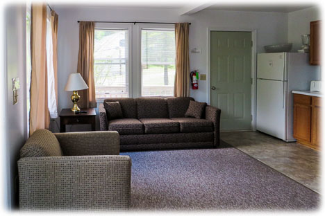 Living room with pull out sofa and love seat